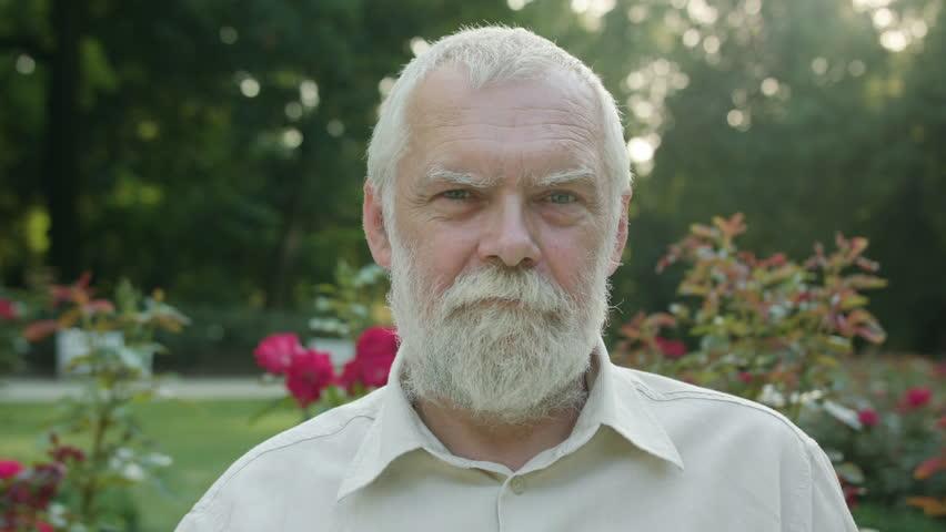 An old man in the park smiling. Closeup shot. Soft focus | Shutterstock HD Video #31921450