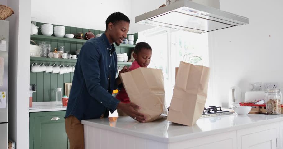 Boy helping Father unpack groceries | Shutterstock HD Video #32027950