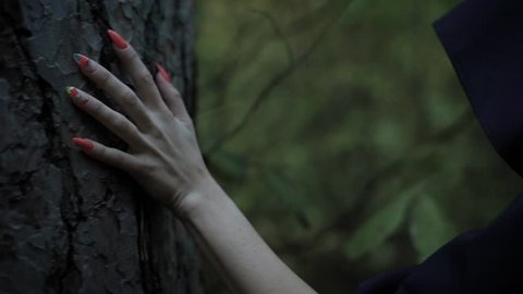 close up shot of hand with long fingernails, a woman in a black cloak touches the bark of a tree in the evening