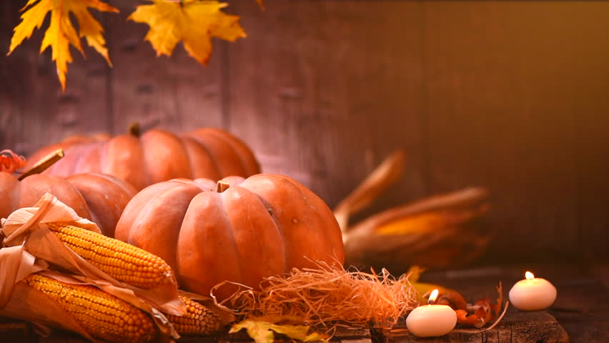 Thanksgiving Day. Pumpkin, Squash. Happy Thanksgiving Day wooden Table Background decorated with pumpkins, corn comb, candles and autumn leaves garland. Holiday Autumn festival scene, Fall, Harvest 4K