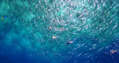 v11837 many people young boys girls snorkeling over coral reef with drone aerial flying view in crystal clear aqua blue shallow water