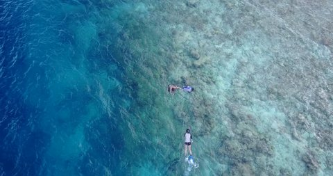 many people young boys girls snorkeling over coral reef with drone aerial flying view in crystal clear aqua blue shallow water