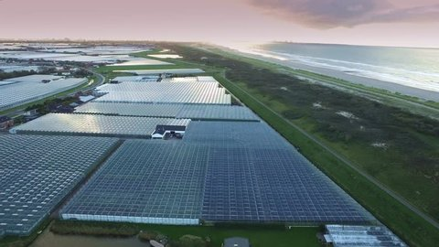 Aerial of greenhouses / glasshouses in the Westland aria in The Netherlands with the dunes and the North Sea