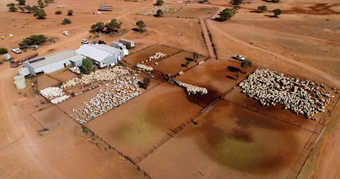Drone shot of large sheep shearing operation in Outback NSW, Australia.