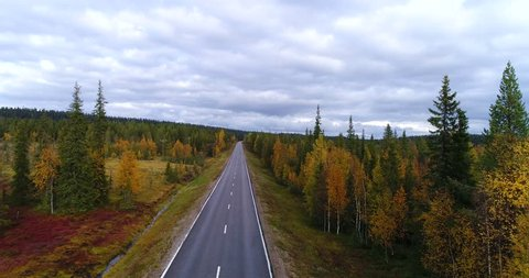 Autumn color road, Cinema 4k aerial view of a white car driving on a fall road, between colorful autumn forest and tunturi fjeld mountains, on a rainy day,Lapland, Finland