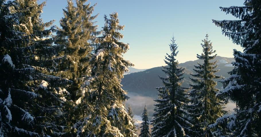 Drone in a wintery wonderland. | Shutterstock HD Video #32960920