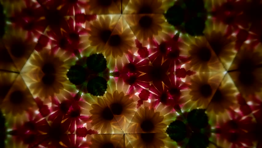 Refraction of pattern plant and flower through glass, view from inside of scientific equipment.