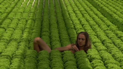 Young man with long hair lies in salad field eating salad