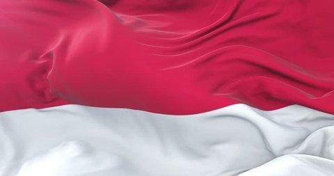 Monaco flag waving at wind in slow in blue sky, loop