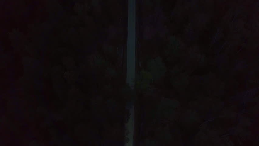 White car Cadillac Cts driving on night dark forest. Aerial top follow view