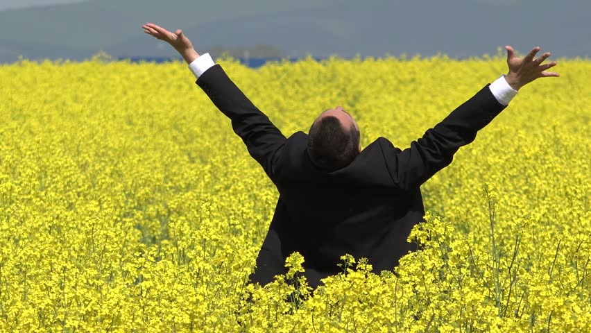 Businessman stand with back in blossom rape field and lift hands up, successful