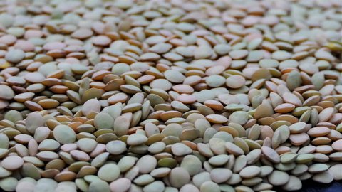 Heap of green lentils rotating in slow motion. Rotation of a Brown Lentil. Macro Lentil 4k. dietry food background. gourmet and organic food concept. Drinks and food background. gastronomy video.