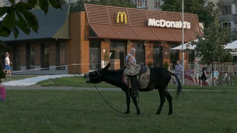 MINSK, BELARUS - JUL 27, 2016: Ungraded: Donkey screams loudly on the lawn near McDonald's, and then continues to eat vegetarian grass. Ungraded H.264 from camera without re-encoding. (av44904u)