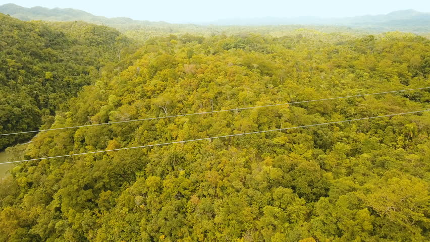 People have fun a zip line through a canyon with a river in the rainforest jungle. Aerial view, tourist attraction at the zipline attraction in the jungle on the island of Bohol. 4K video. Travel