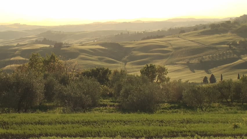 Val d'Orcia in the province of Siena in Tuscany, Italy at sunset