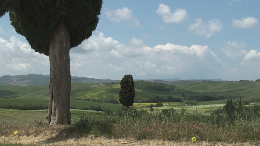 Typical landscape near Terrapille in Val d'Orcia in Tuscany, Italy