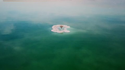 Aerial footage of a Bare tree on a salt deposit in the Dead Sea