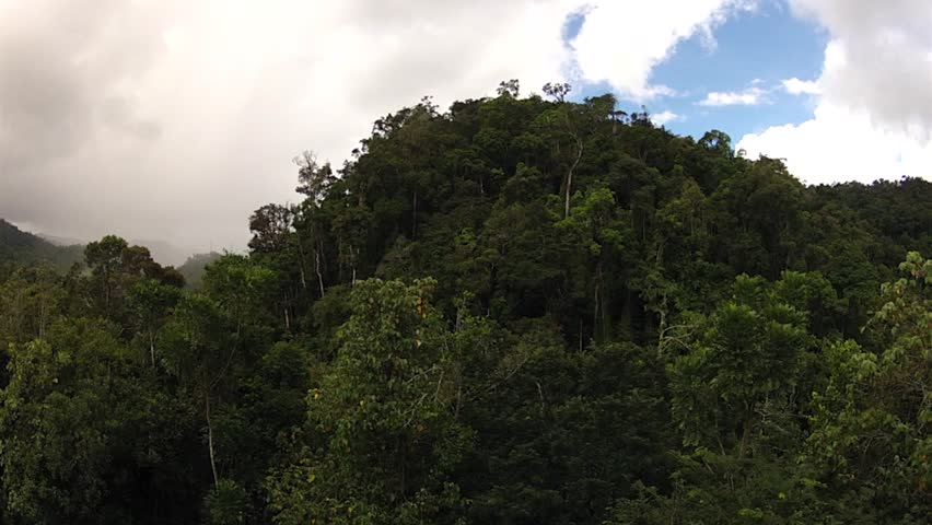 Time lapse of rain forest in Ranomafana Madagascar. From canopy height rain and & Toronto Skyline View From East Toronto Park Stock Footage Video ...