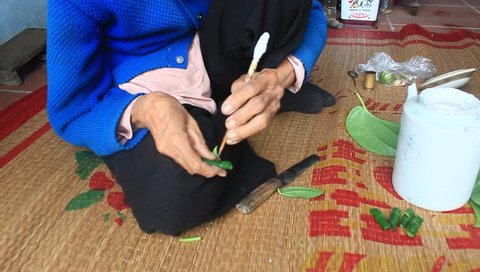 Woman making betel with betel and areca