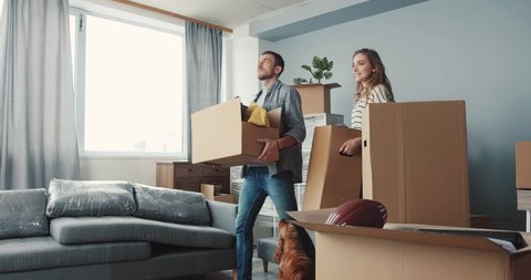 Young people bringing last boxes with things in new apartment. Young husband hugging wife. Cute dog walking near to couple in love.