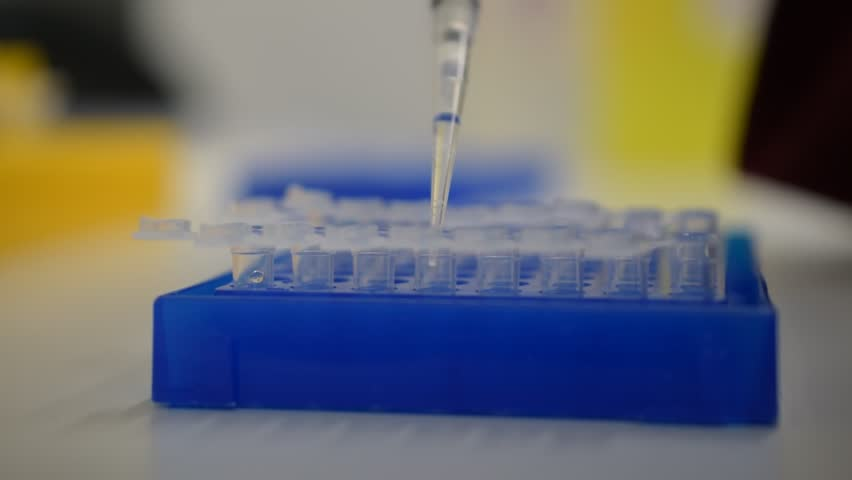 scientist using one channel pipette to transfer DNA liquid. NGS Sequencing, pipetting sample in test tubes. laboratory concept: research, biochemistry, pharmaceutical medicine and moleular technology