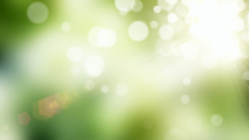 Natural green motion background (seamless loop)...