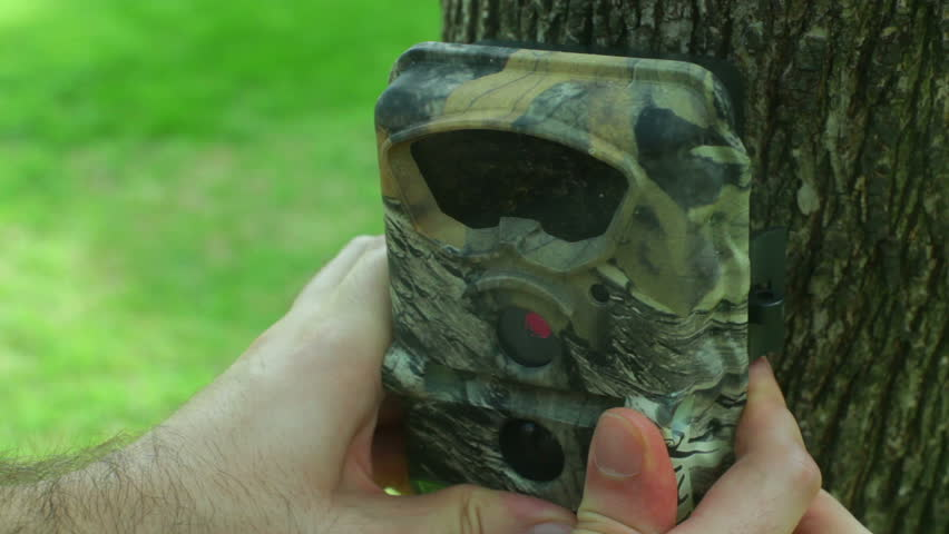 Setting up a night vision hunter camera