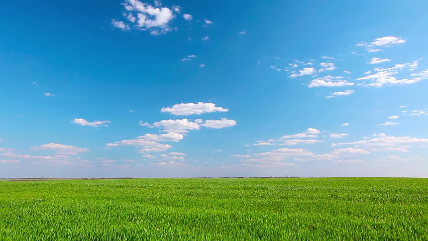 green grass blue sky. Simple Green Green Grass Blue Sky Stock Video Footage  4K And HD Clips   Shutterstock For Grass Blue Sky I