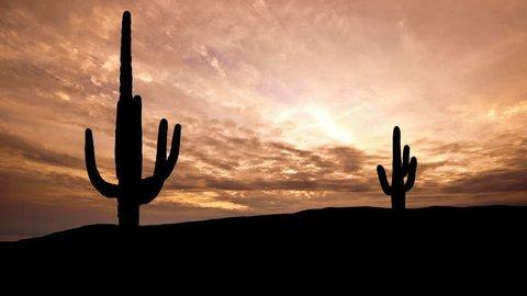 Arizona Saguaro dusk.