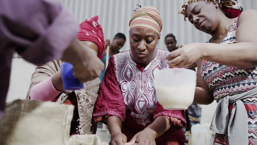 African family and community members work together, measuring out quantities of rice or grain. In slow motion.
