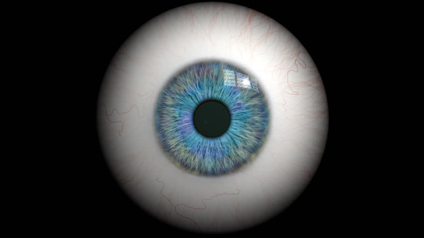 Eye Anatomy Stock Video Footage 4k And Hd Video Clips Shutterstock