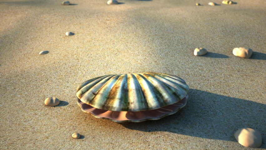 A sea shell opening with a pearl inside.