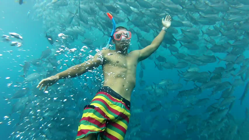 Person swimming among shoal of jack fish in tulemben in Bali, Indonesia | Shutterstock HD Video #4199878