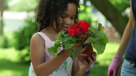 Little biracial girl helps with planting flowers in backyard garden area. Could be used to showcase neighborhood, garden or gardening, cooperation, teaching, family, helpfulness, being helpful