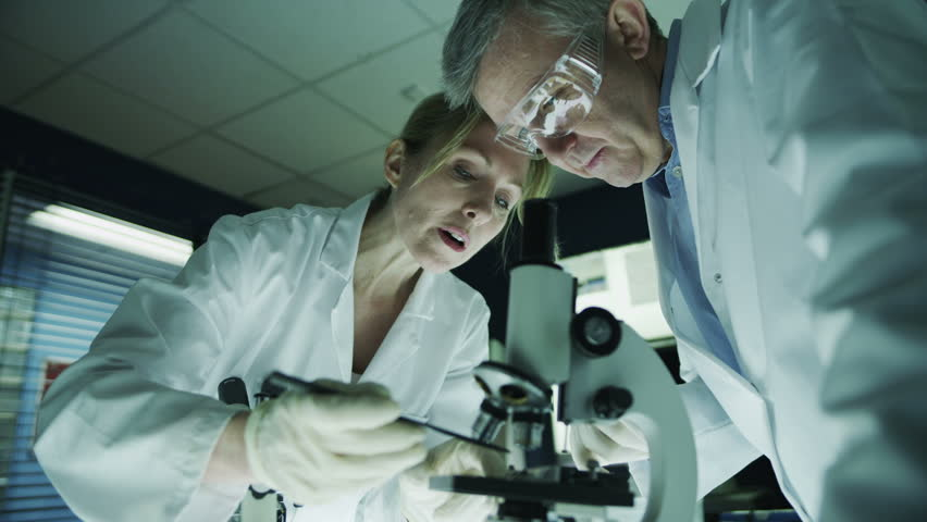 Mature male and female medical researchers working together in a dark laboratory, looking through microscopes and discussing their work.  #4362110