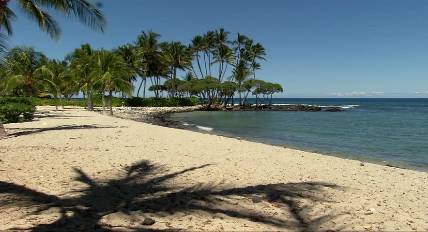 Palm tree shadows wave over the sand on an uninhabited beach in Hawaii