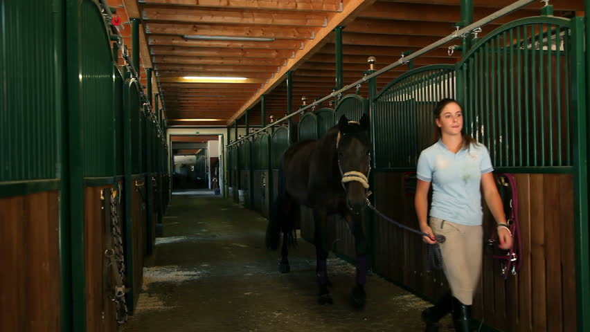 Slide in on big stall with lots of horses, woman taking horse out