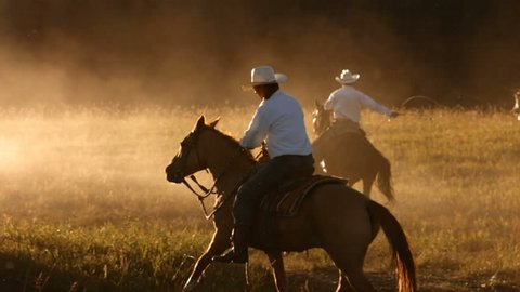 Cowboy on horses at sunset, slow motion