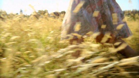 Woman walking through field.