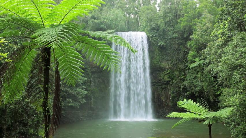 Landscape of Millaa Millaa waterfall, Atherton Tablelands, Queensland, Australia, Southern Hemisphere