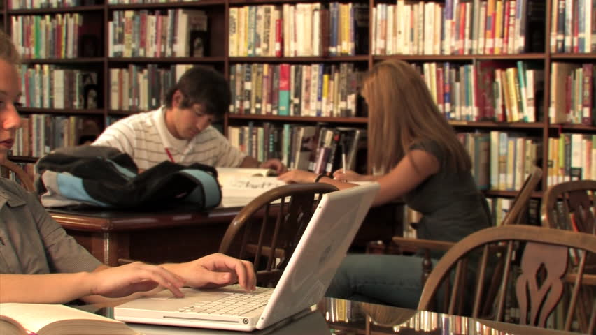 Students study in the library.