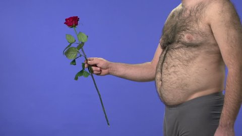 Hairy overweight man giving a rose to his woman. High definition video shot on blue screen in studio.