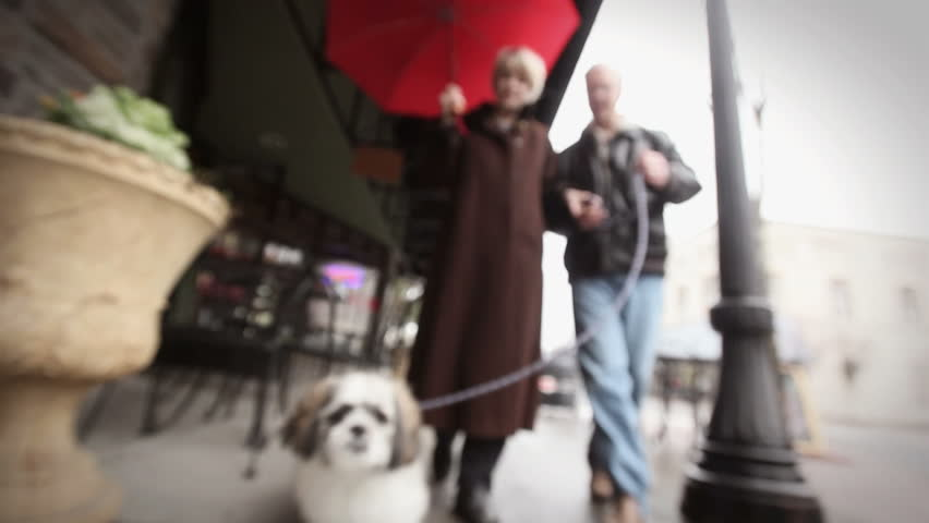 An old couple walks down the street under a red umbrella with their dog who gets very close to the camera