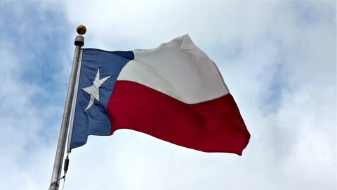 Texas State Flag Blows in the Wind.