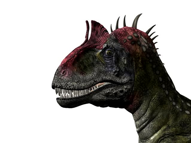 Cryolophosaurus Dinosaur animation. Realistic head movements.. Clean white background. Easy editing.