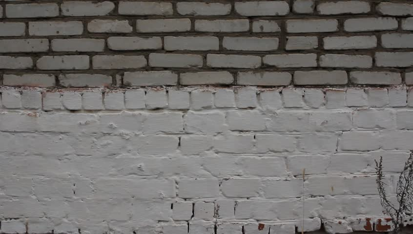 Applying Plaster To A Brick Wall Construction Worker Plastering