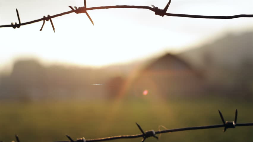 Barbed wire on a background sunrise