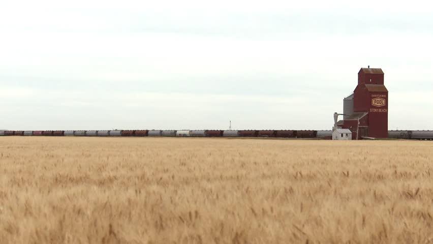 Cargo train parked at a grain elevator in Saskatchewan. (Tilt up)