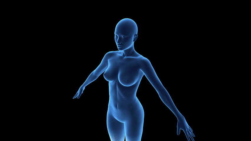 Stock Video Of Wireframe Scan Over Female Anatomy 5372150