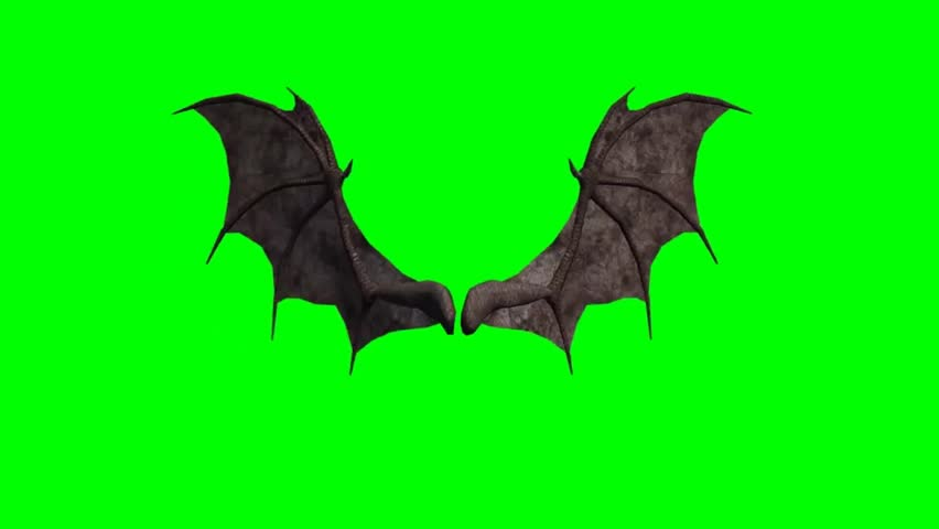 Demon Wings in Motion - seperated on green screen
